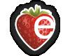 Pflegeteam Schwester Erdmuthe_Logo